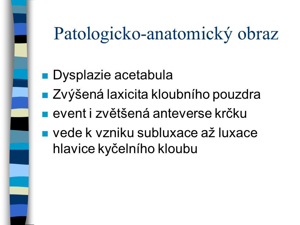 Patologicko-anatomický obraz