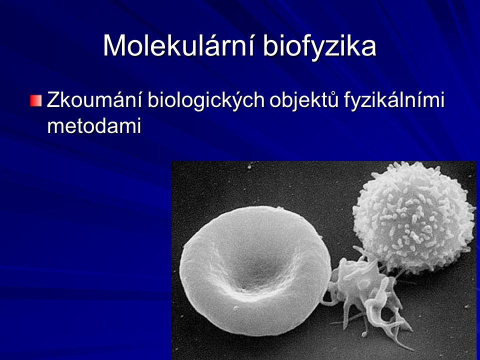 Molekulární biofyzika