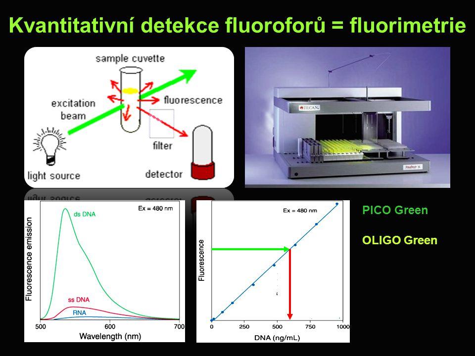 Kvantitativní detekce fluoroforů = fluorimetrie