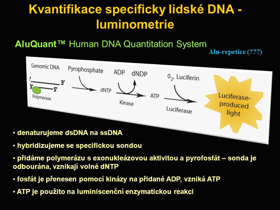 Kvantifikace specificky lidské DNA - luminometrie