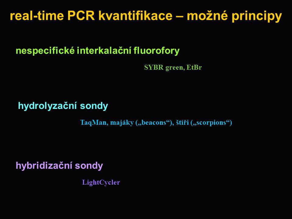 real-time PCR kvantifikace – možné principy