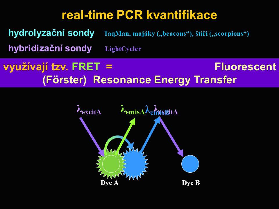 real-time PCR kvantifikace