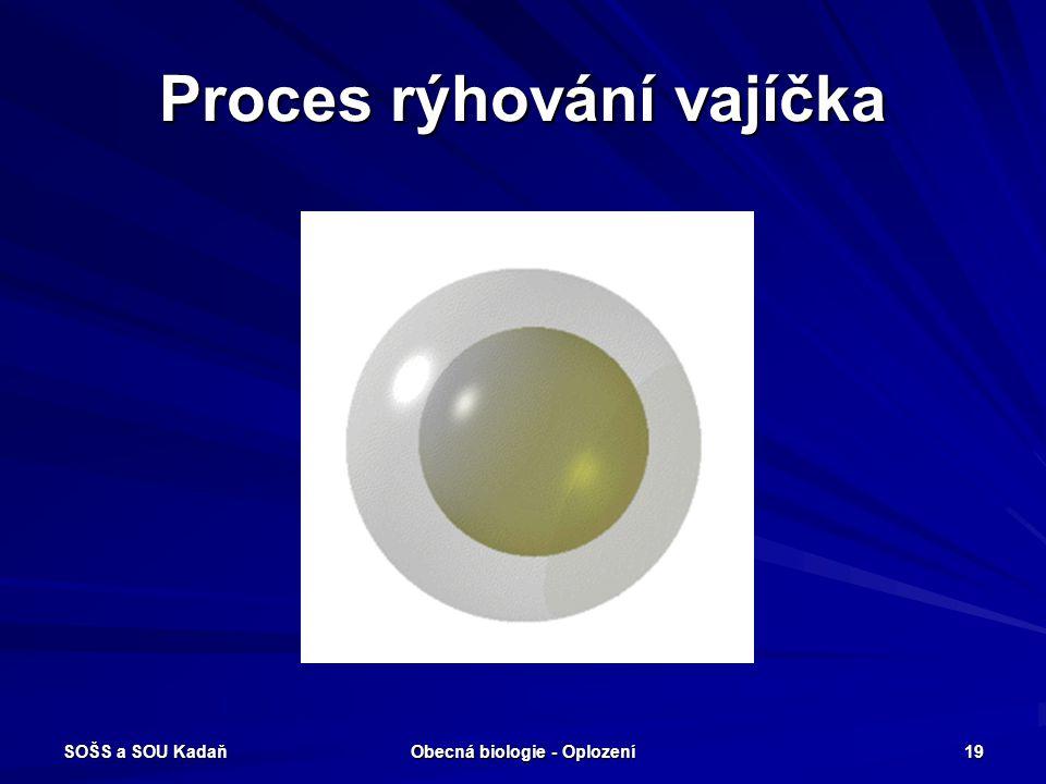 Proces rýhování vajíčka