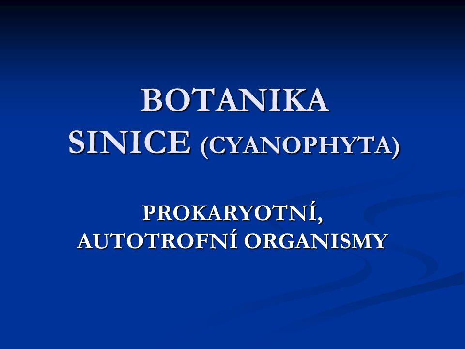 BOTANIKA SINICE (CYANOPHYTA)