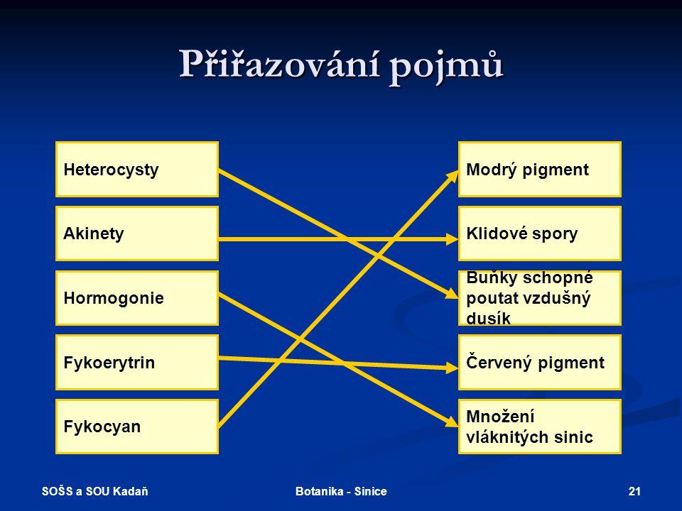 Přiřazování pojmů Heterocysty Modrý pigment Akinety Klidové spory
