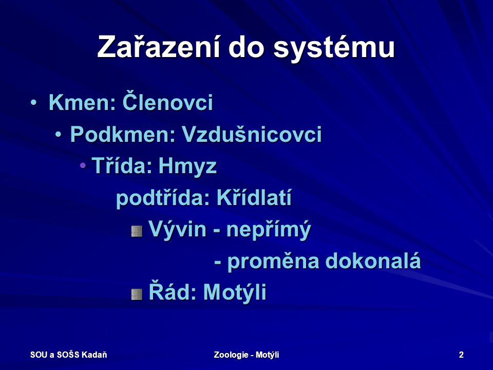 Zařazení do systému Kmen: Členovci Podkmen: Vzdušnicovci Třída: Hmyz