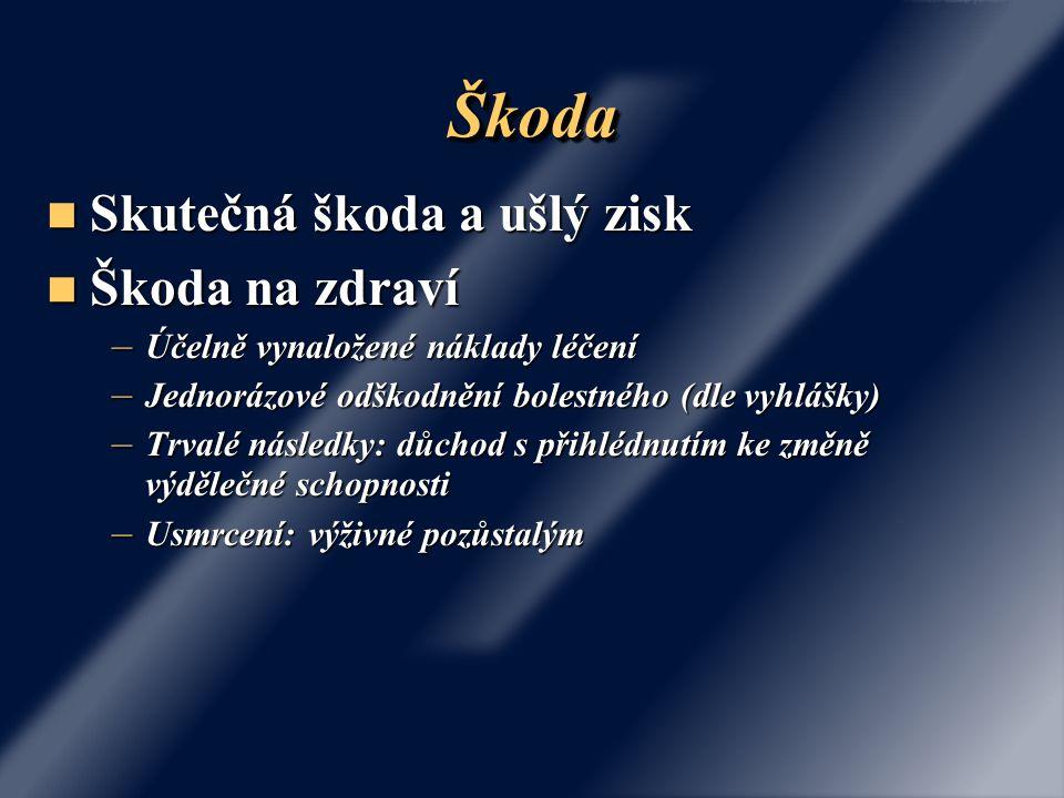 Škoda Skutečná škoda a ušlý zisk Škoda na zdraví
