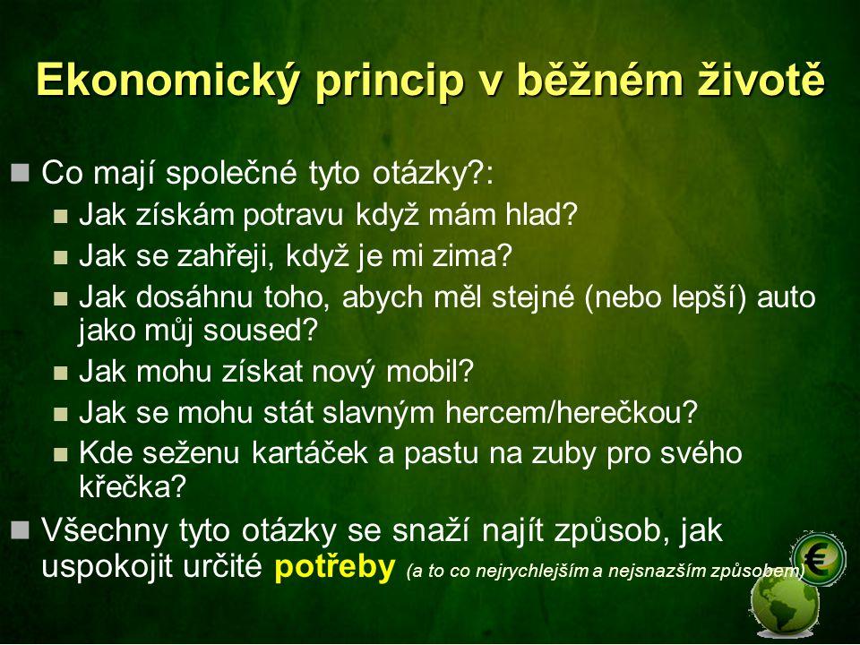 Ekonomický princip v běžném životě
