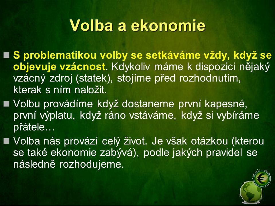 Volba a ekonomie