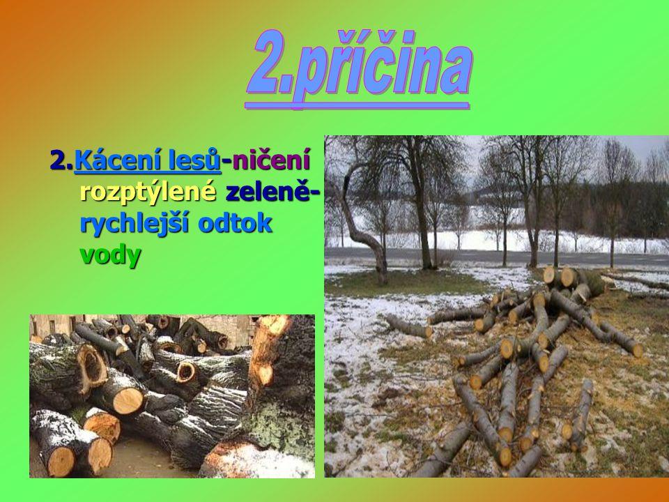 2.příčina 2.Kácení lesů-ničení rozptýlené zeleně-rychlejší odtok vody