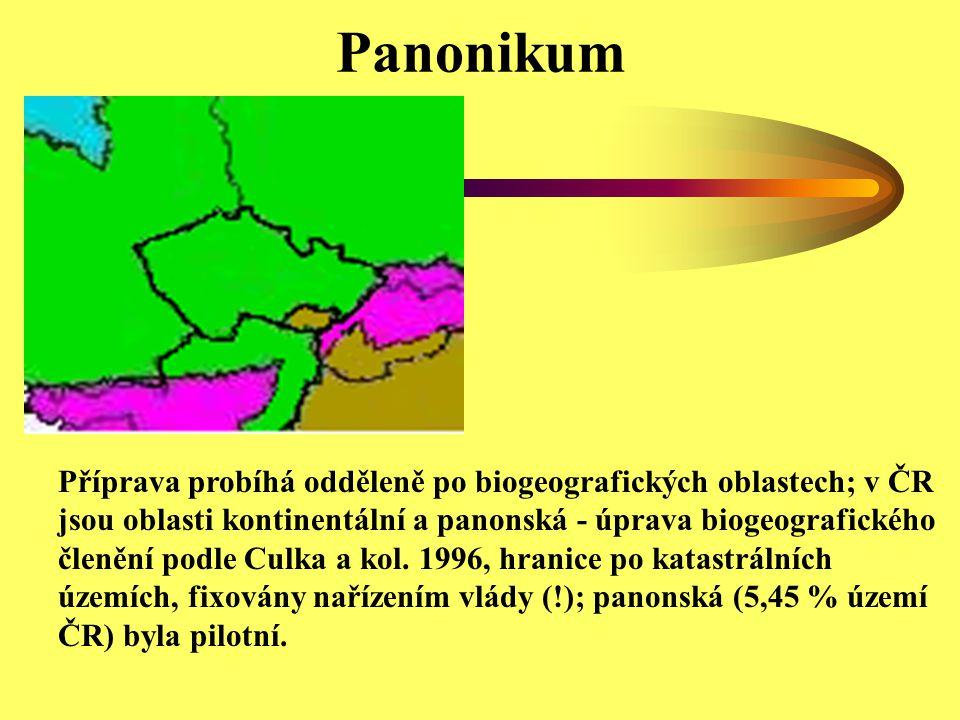 Panonikum