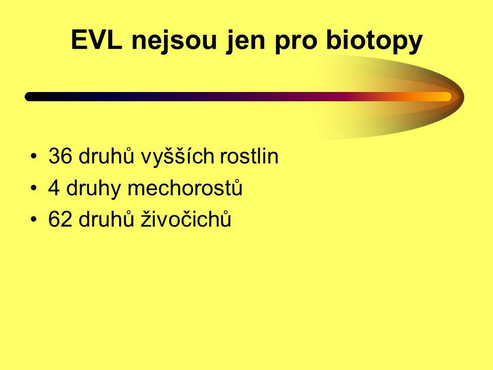 EVL nejsou jen pro biotopy
