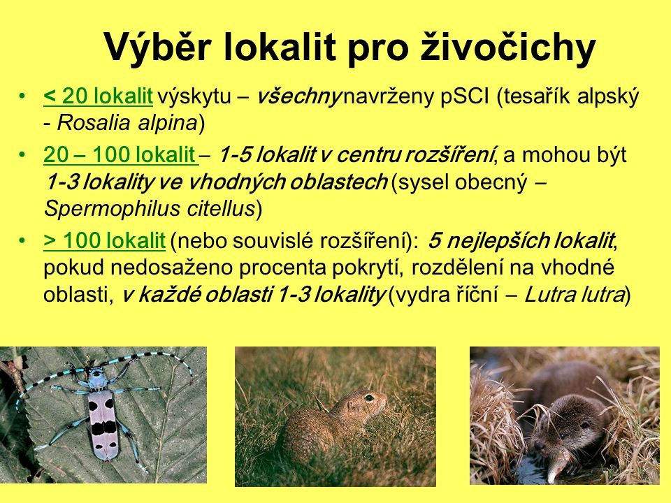 Výběr lokalit pro živočichy