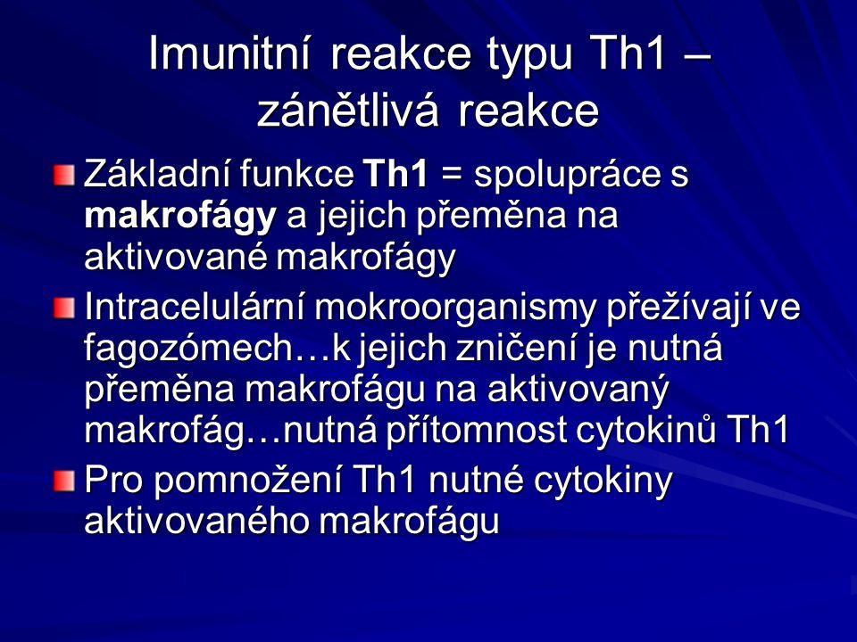 Imunitní reakce typu Th1 – zánětlivá reakce