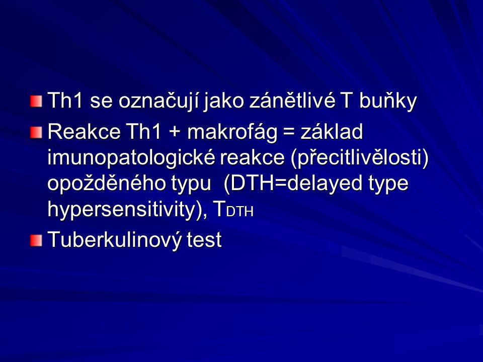 Th1 se označují jako zánětlivé T buňky
