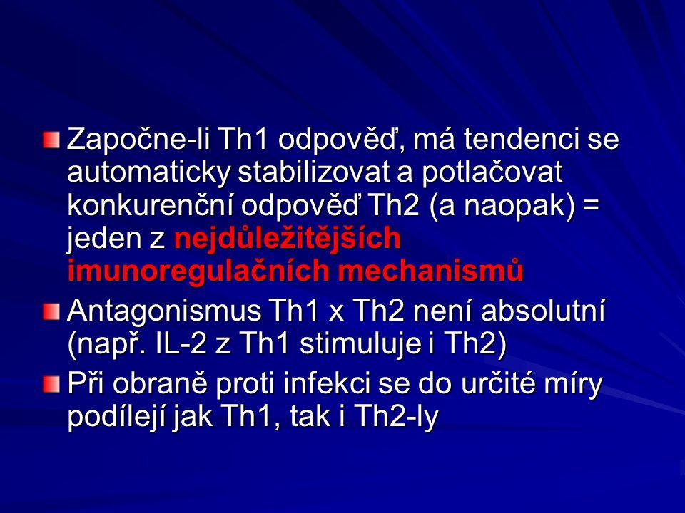 Započne-li Th1 odpověď, má tendenci se automaticky stabilizovat a potlačovat konkurenční odpověď Th2 (a naopak) = jeden z nejdůležitějších imunoregulačních mechanismů