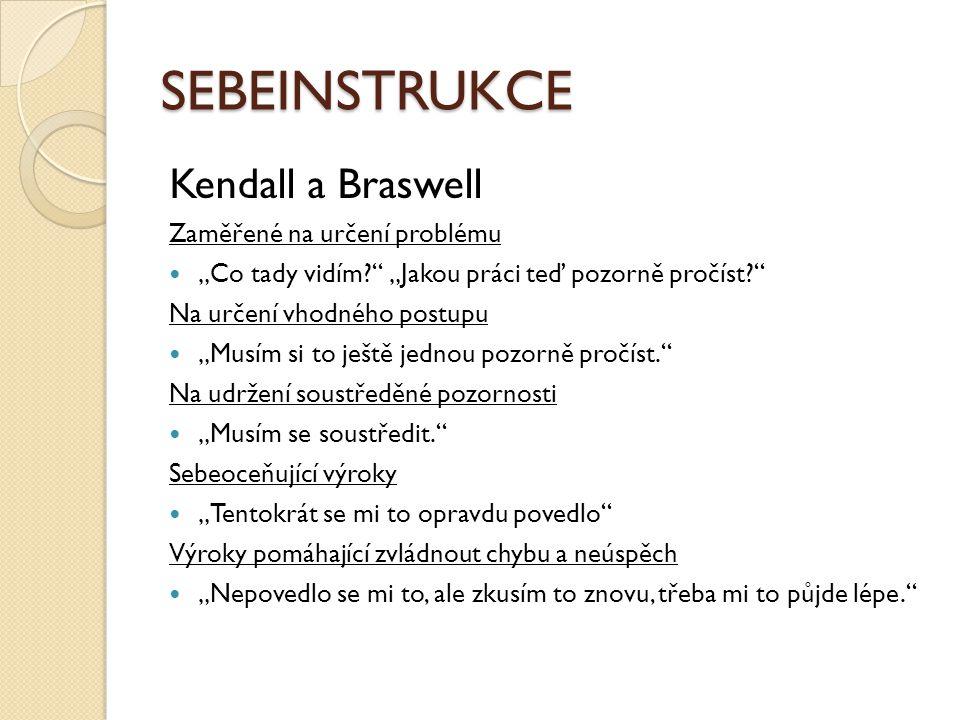SEBEINSTRUKCE Kendall a Braswell Zaměřené na určení problému