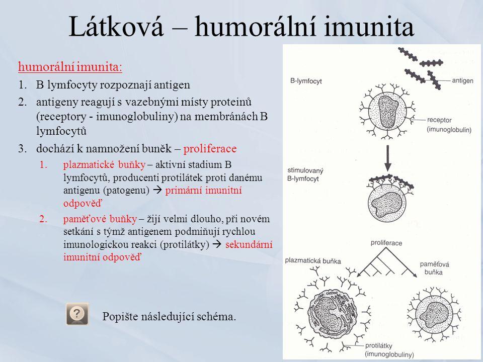 Látková – humorální imunita