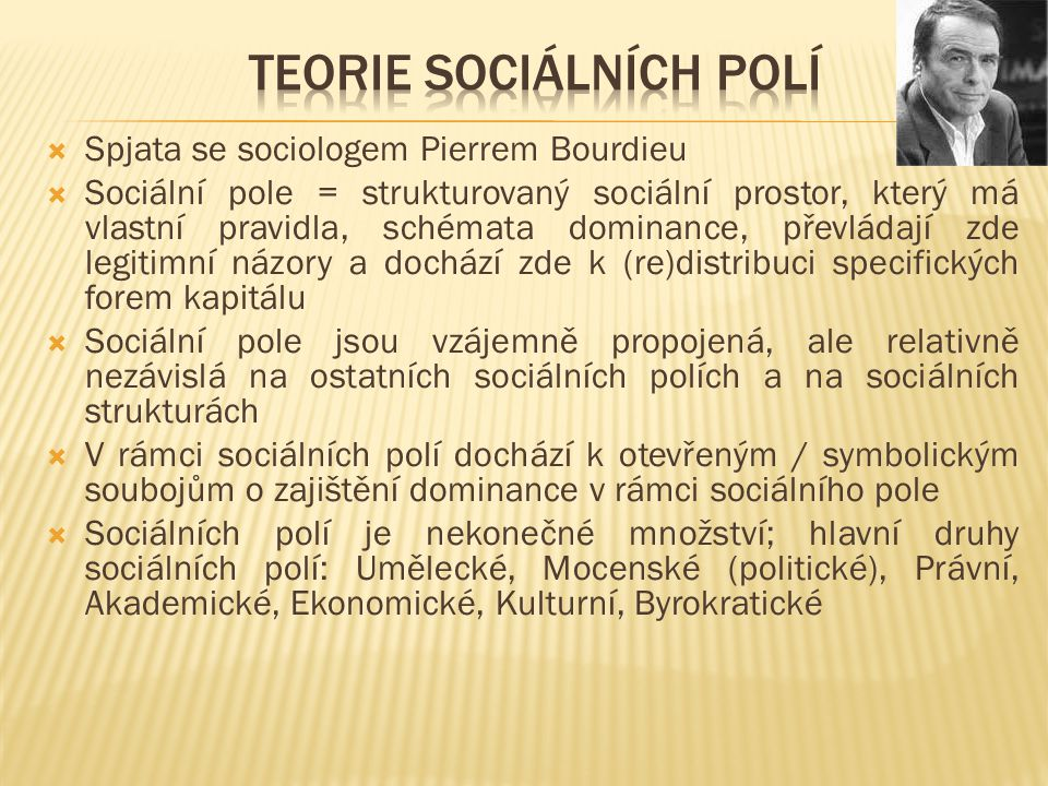 Teorie sociálních polí