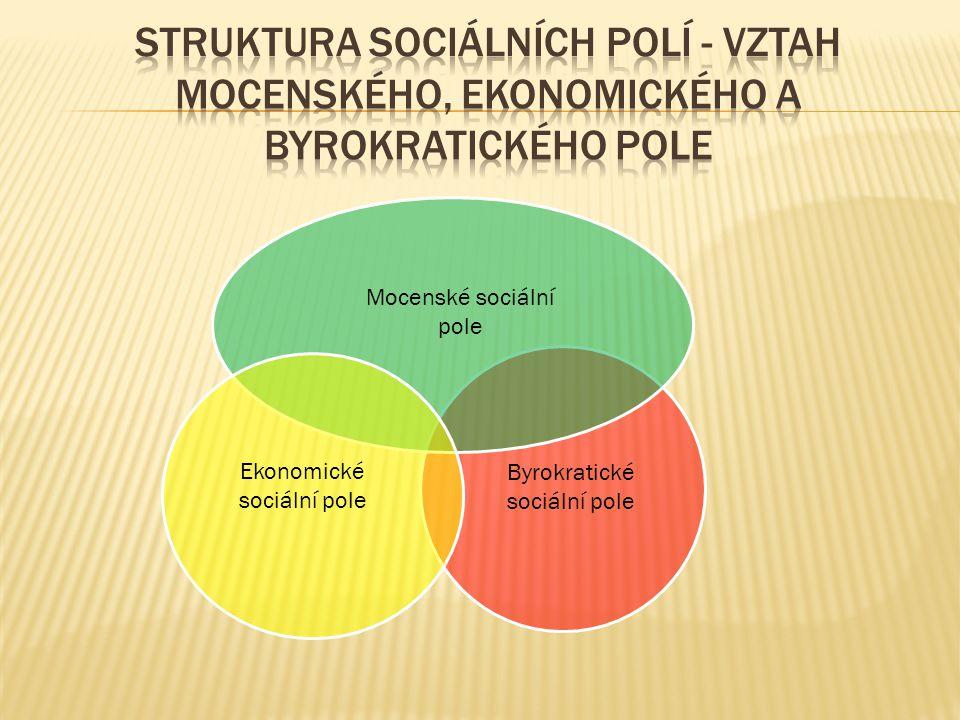 Struktura sociálních polí - vztah mocenského, ekonomického a byrokratického pole