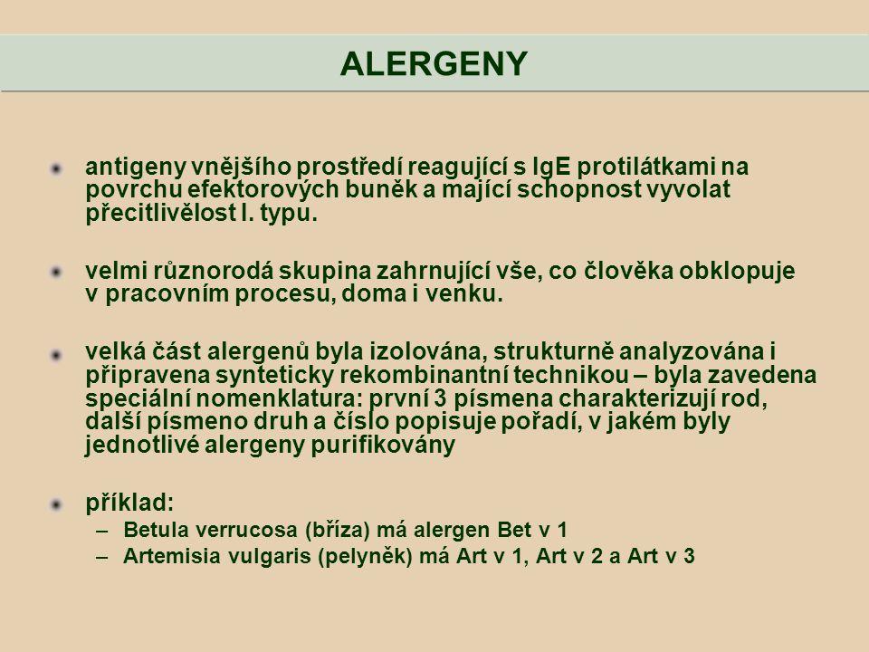 ALERGENY antigeny vnějšího prostředí reagující s IgE protilátkami na povrchu efektorových buněk a mající schopnost vyvolat přecitlivělost I. typu.