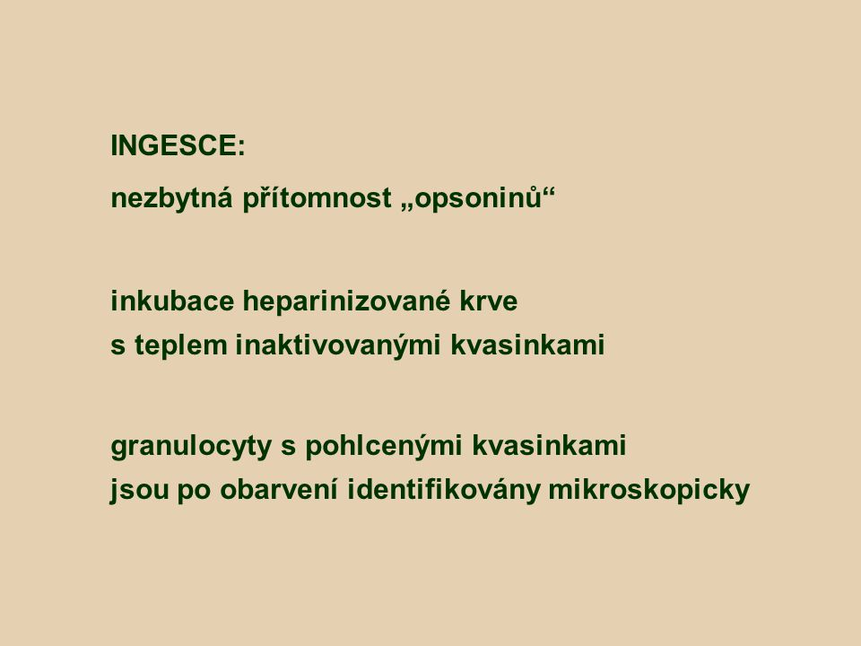 """INGESCE: nezbytná přítomnost """"opsoninů inkubace heparinizované krve. s teplem inaktivovanými kvasinkami."""