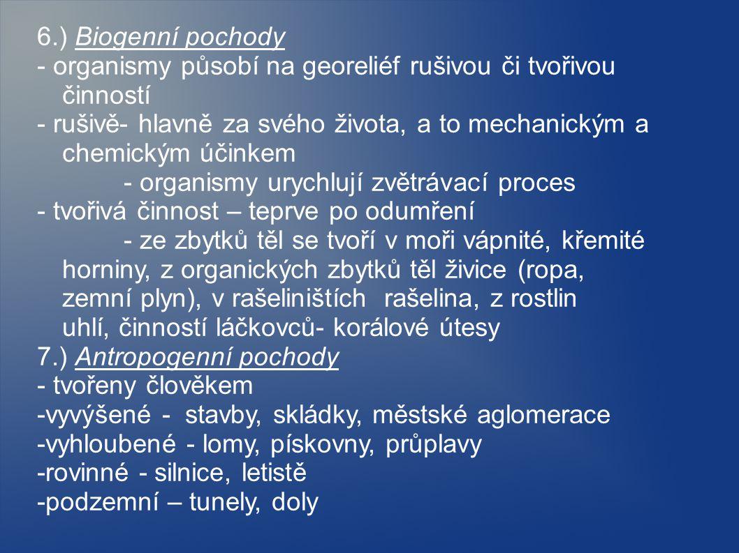 6.) Biogenní pochody - organismy působí na georeliéf rušivou či tvořivou činností.