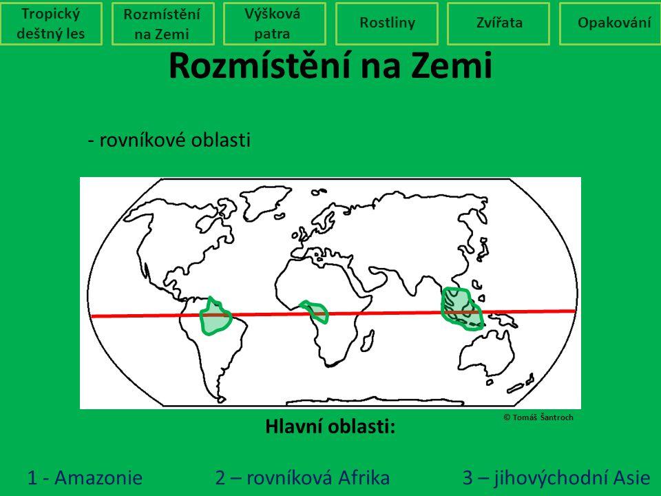 Rozmístění na Zemi - rovníkové oblasti Hlavní oblasti: 1 - Amazonie