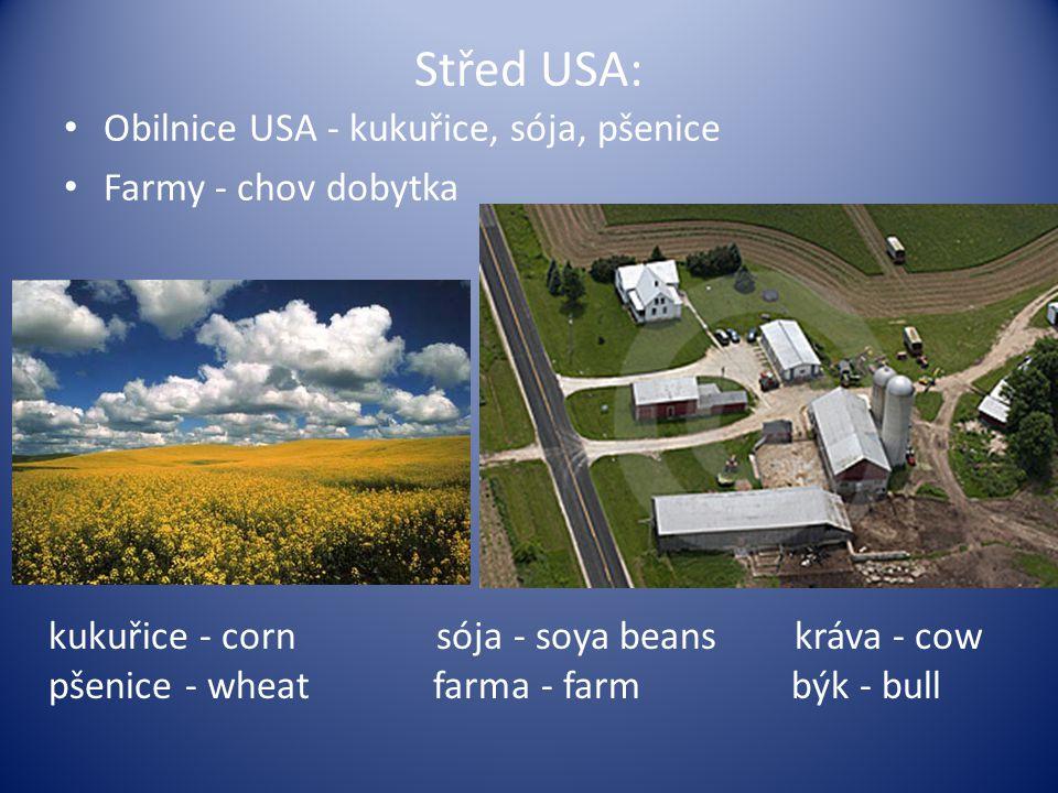 Střed USA: Obilnice USA - kukuřice, sója, pšenice Farmy - chov dobytka