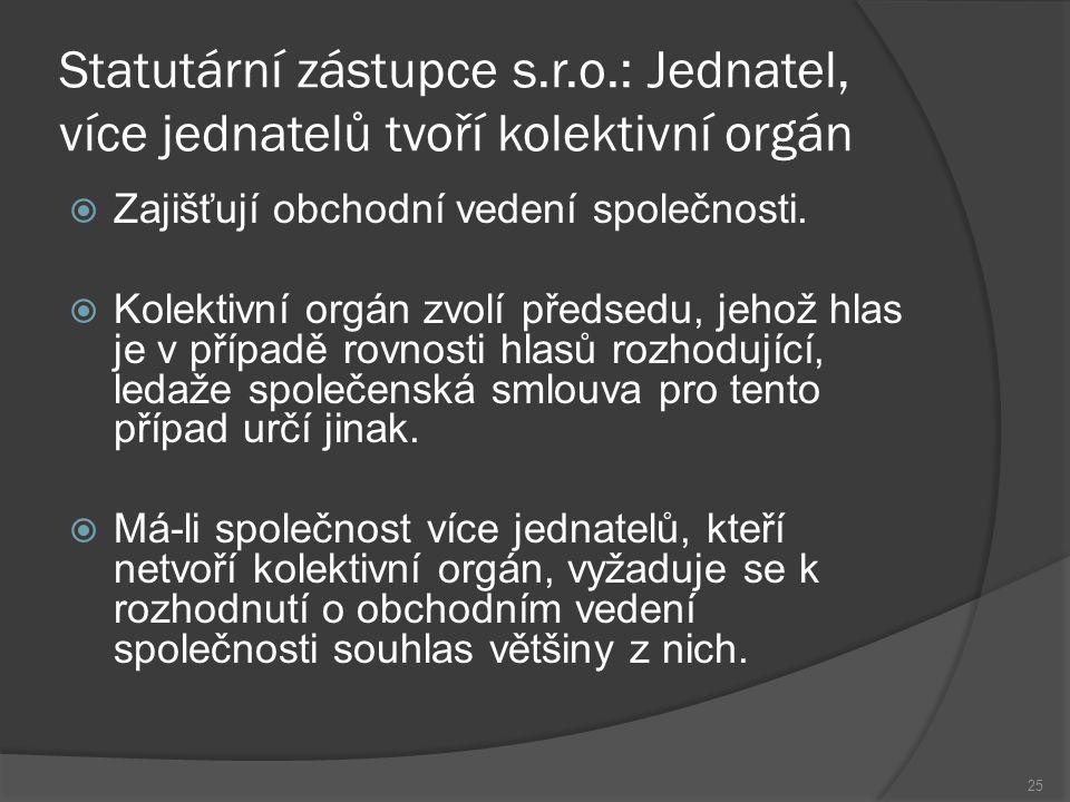 Statutární zástupce s. r. o