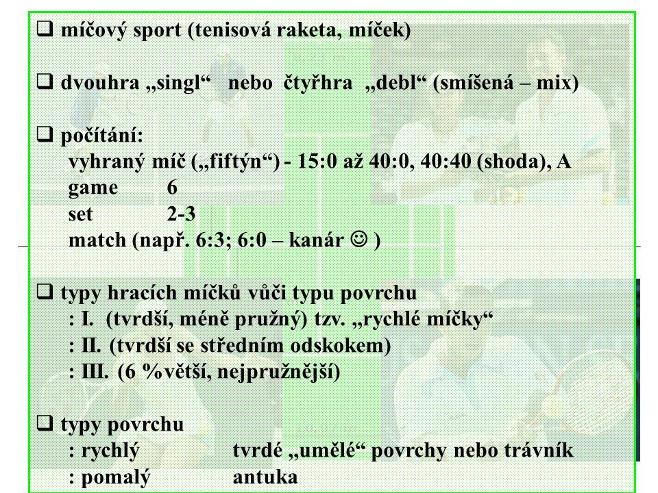 míčový sport (tenisová raketa, míček)
