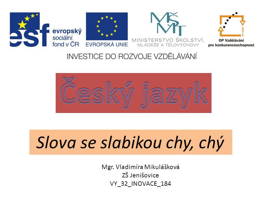 Český jazyk Slova se slabikou chy, chý Mgr. Vladimíra Mikulášková
