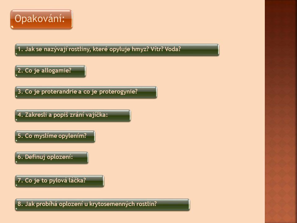 Opakování: 1. Jak se nazývají rostliny, které opyluje hmyz Vítr Voda 2. Co je allogamie 3. Co je proterandrie a co je proterogynie