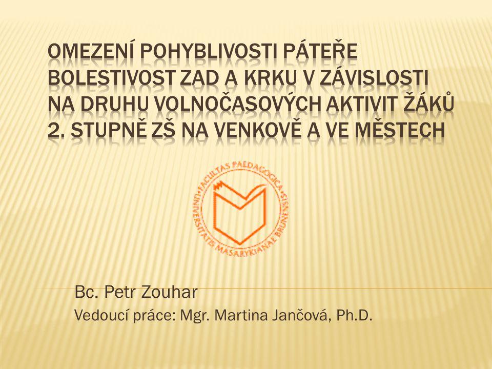 Bc. Petr Zouhar Vedoucí práce: Mgr. Martina Jančová, Ph.D.