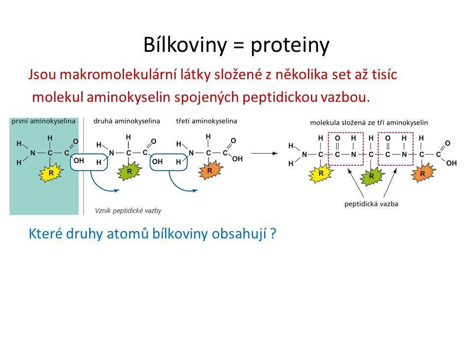 Bílkoviny = proteiny