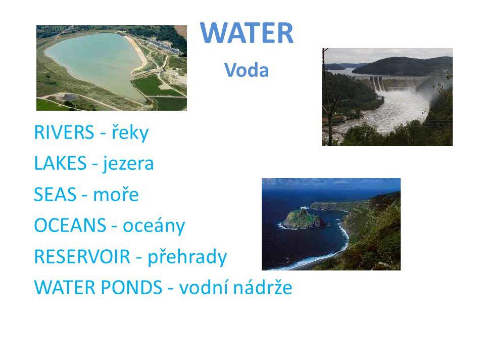 WATER Voda RIVERS - řeky LAKES - jezera SEAS - moře OCEANS - oceány