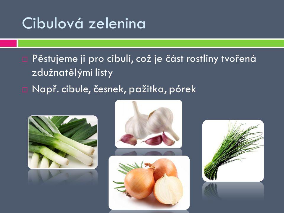 Cibulová zelenina Pěstujeme ji pro cibuli, což je část rostliny tvořená zdužnatělými listy.
