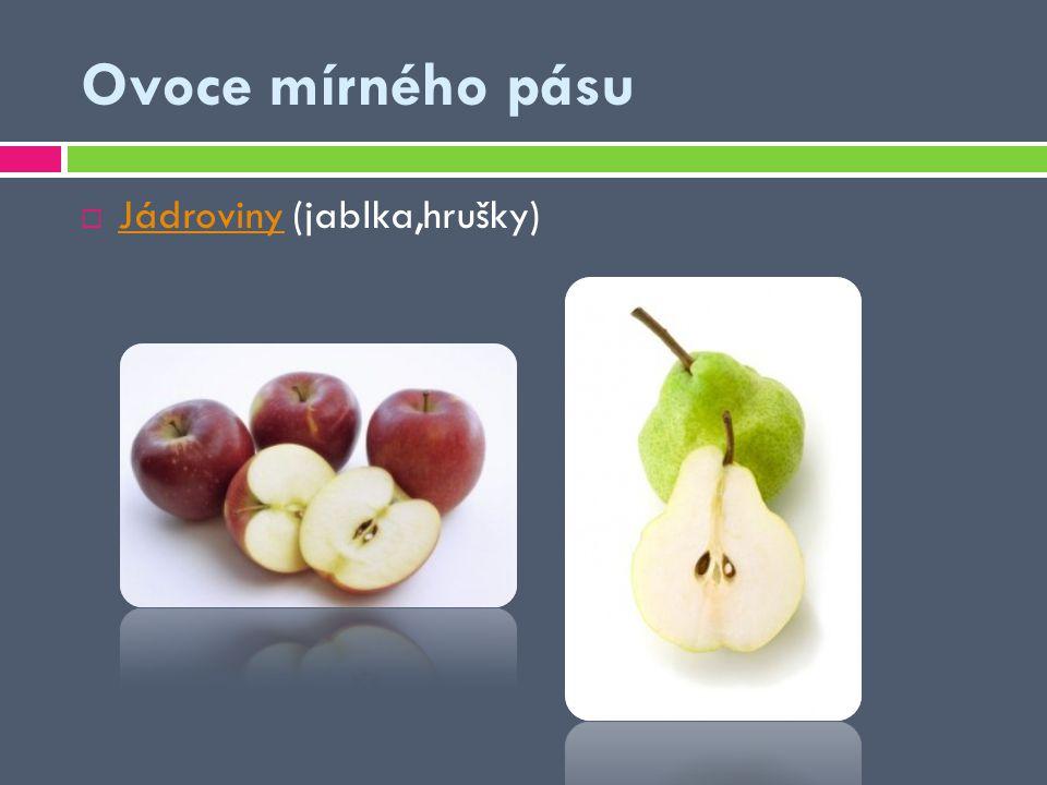 Ovoce mírného pásu Jádroviny (jablka,hrušky)