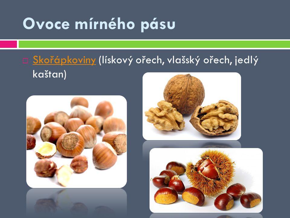 Ovoce mírného pásu Skořápkoviny (lískový ořech, vlašský ořech, jedlý kaštan)