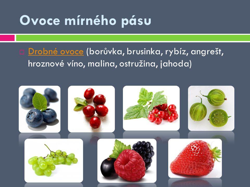 Ovoce mírného pásu Drobné ovoce (borůvka, brusinka, rybíz, angrešt, hroznové víno, malina, ostružina, jahoda)
