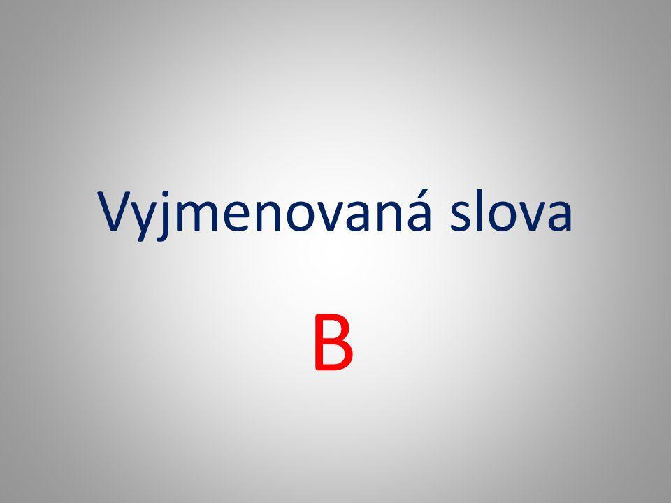 Vyjmenovaná slova B