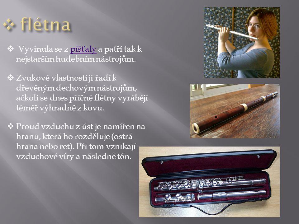 flétna Vyvinula se z píšťaly a patří tak k nejstarším hudebním nástrojům.