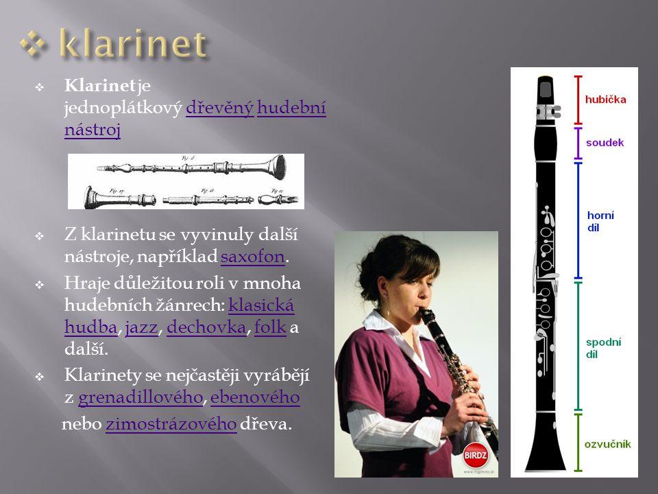 klarinet Klarinet je jednoplátkový dřevěný hudební nástroj