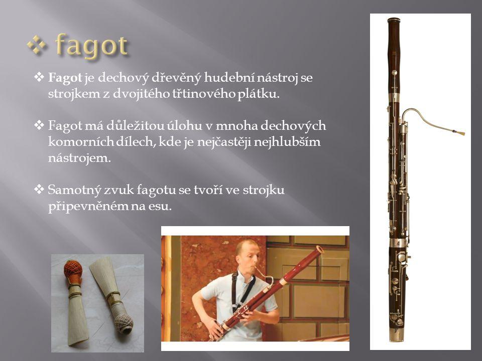 fagot Fagot je dechový dřevěný hudební nástroj se strojkem z dvojitého třtinového plátku.
