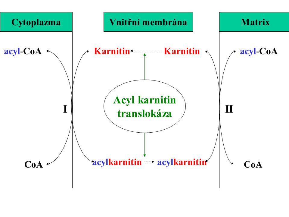 Acyl karnitin translokáza I II