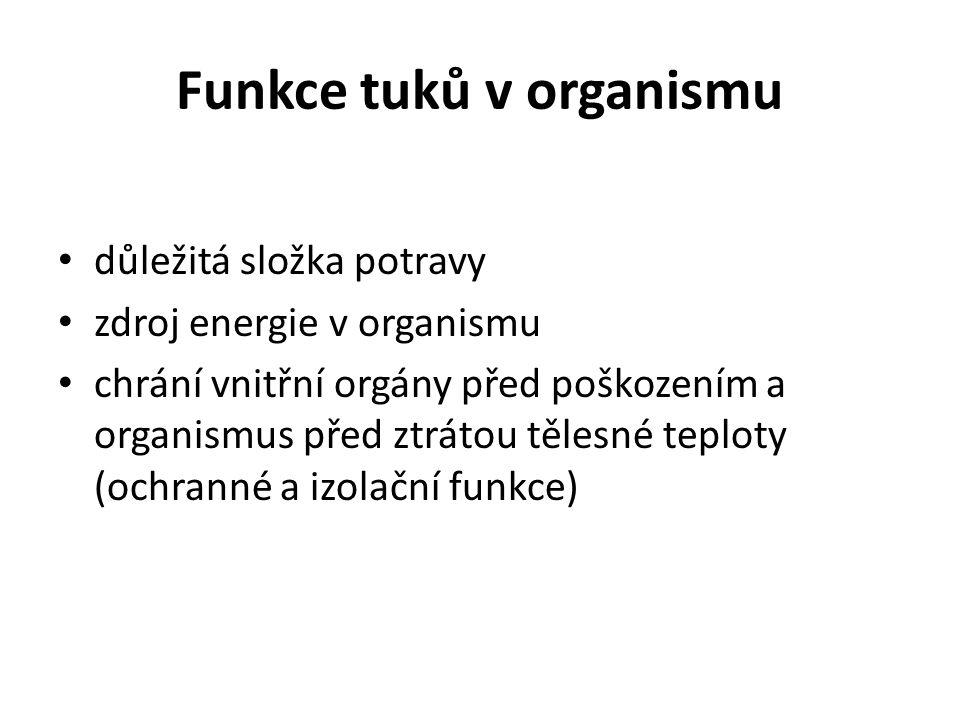 Funkce tuků v organismu