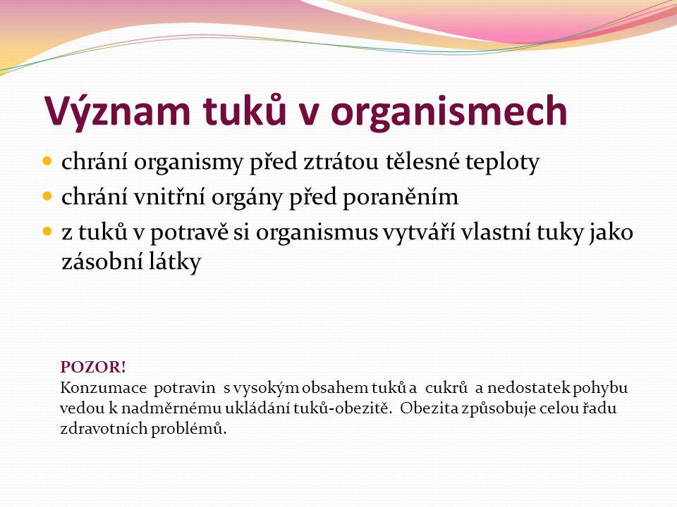 Význam tuků v organismech