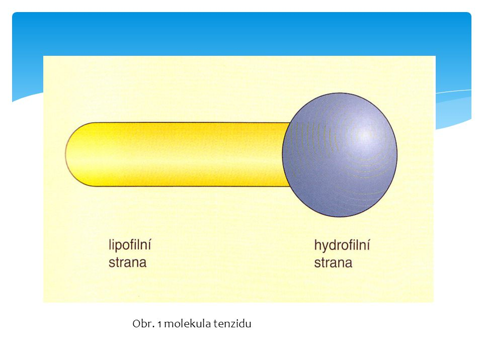 Obr. 1 molekula tenzidu