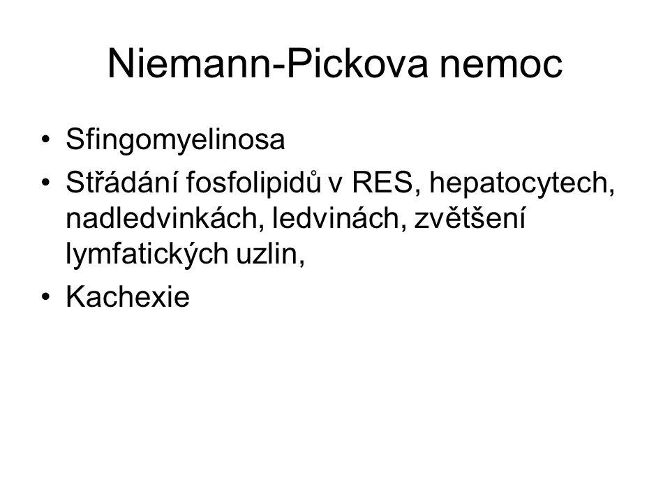 Niemann-Pickova nemoc