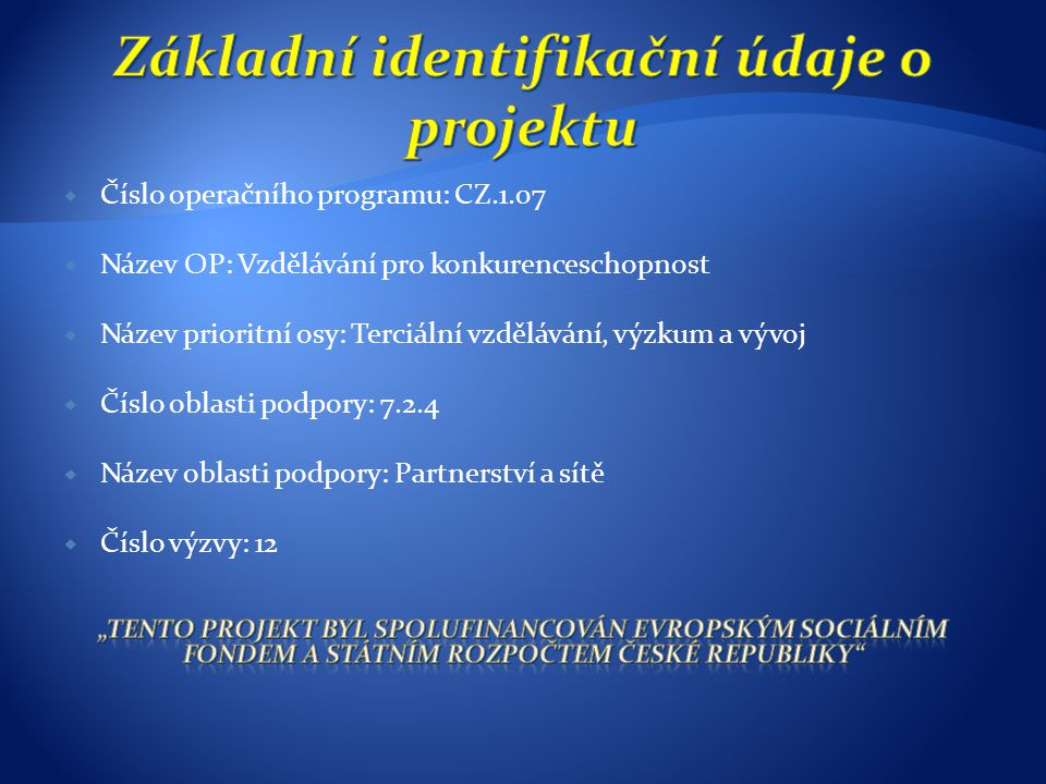 Základní identifikační údaje o projektu